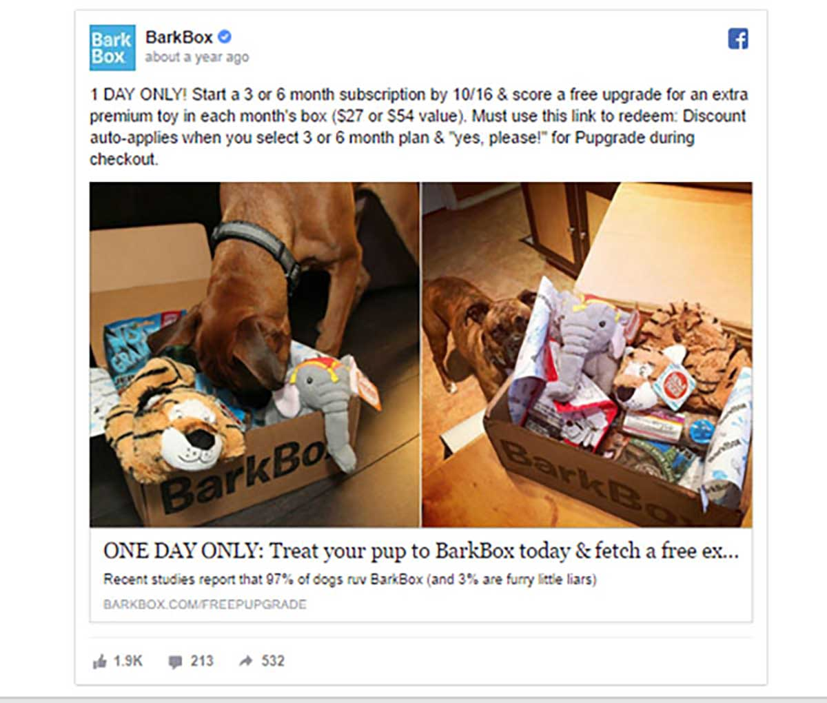 Bark Box Exclusive Offer Example
