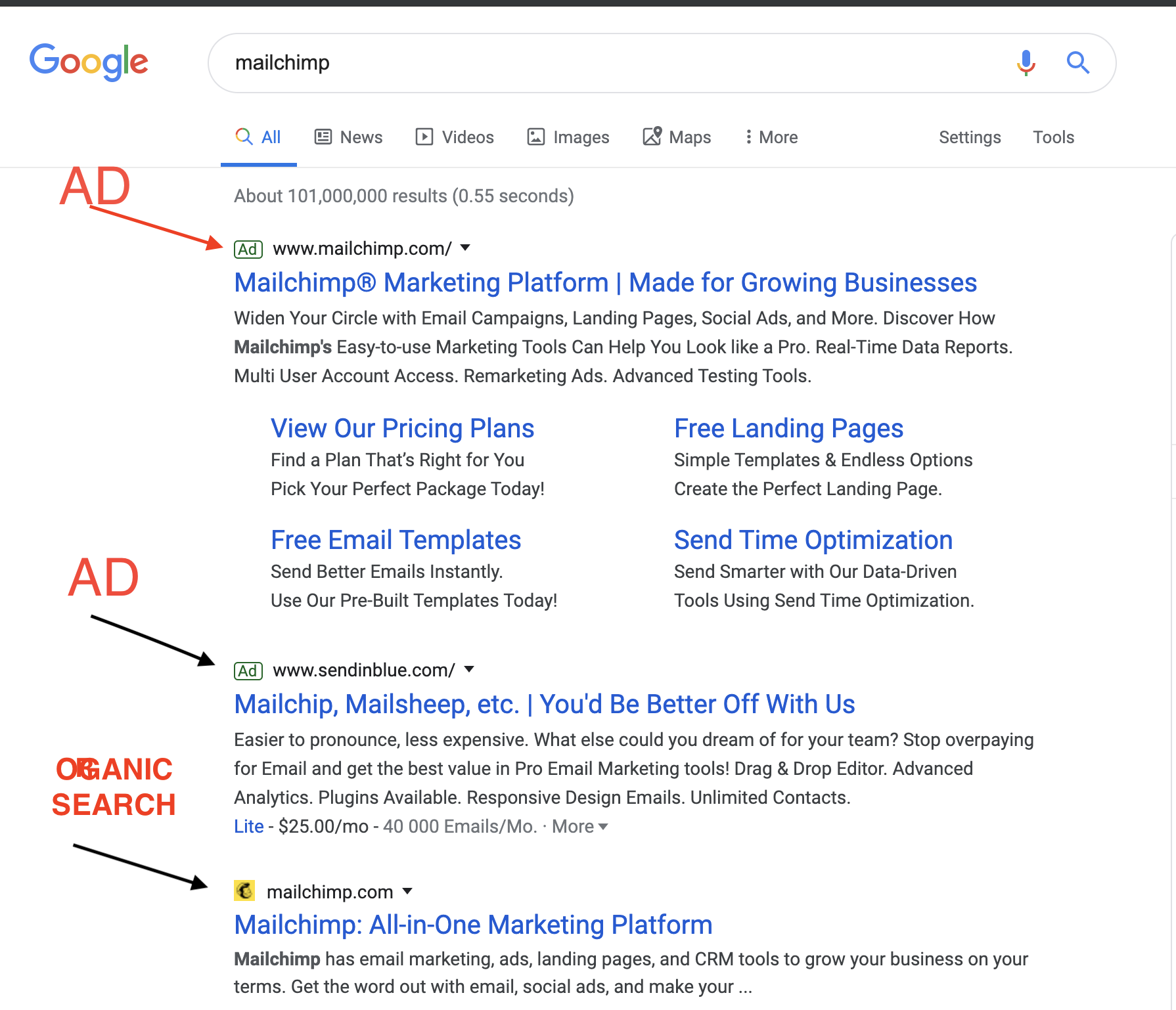 Google Ads - Organic Search Example