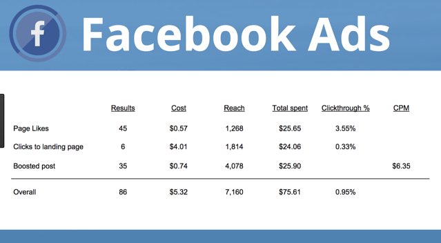 Facebook Ads Campaign Results