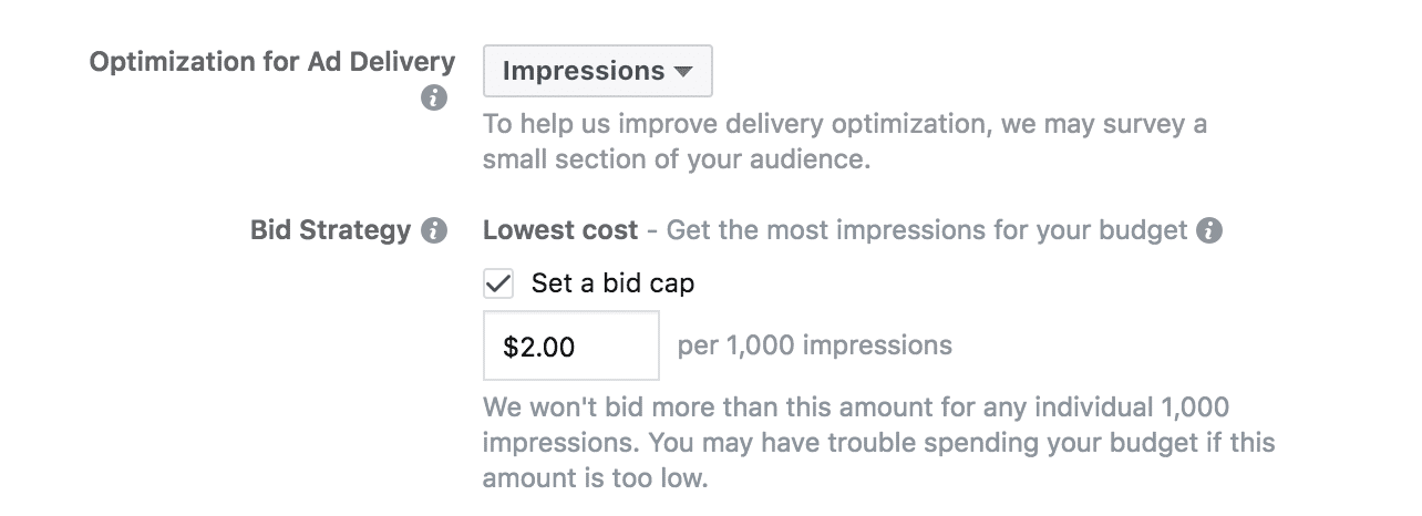 Facebook Bid Strategy